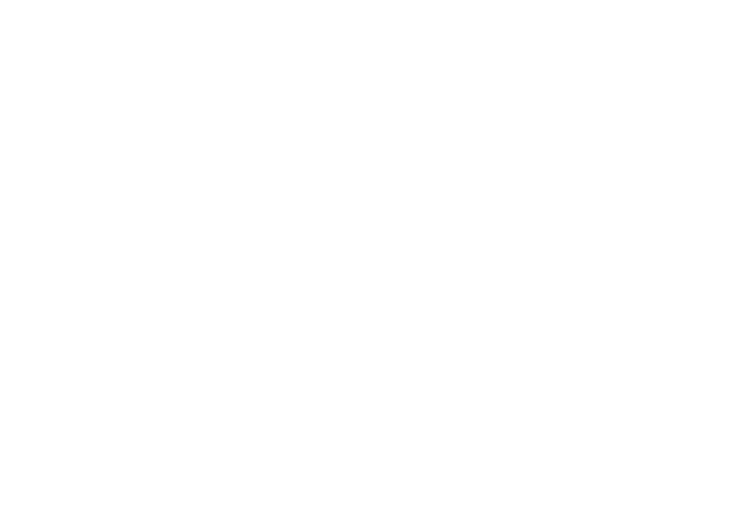 BOBO CHOSES BARCELONA BORN